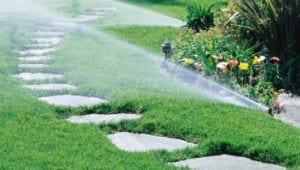 water managment livingwater landscape