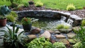 koi ponds livingwater landscape
